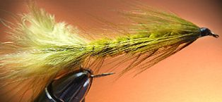 Lake Trout 3 St Gold Head Woolly Bugger Streamer # 6 Bach-Rainbow-Sea-Pond